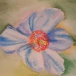 akvarel 7