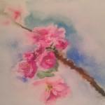 akvarel77